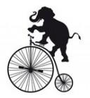 elefante liotru in bici