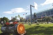 L'aeroporto di Fontanarossa