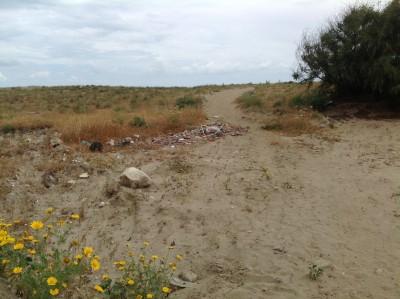 Oasi del Simeto e rifiuti