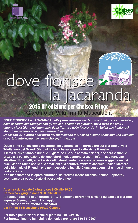 Locandina dove fiorisce la jacaranda 2015