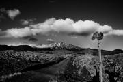 Etna in bianco e nero (ph Sergio Perez)