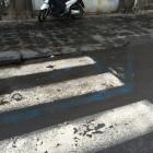 Strisce pedonali o strisce blu per la sosta? Catania via Plebiscito
