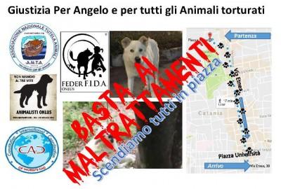 02 C - Giustizia Per Angelo e per tutti gli Animali torturati