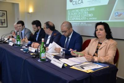 Seminario Cilca