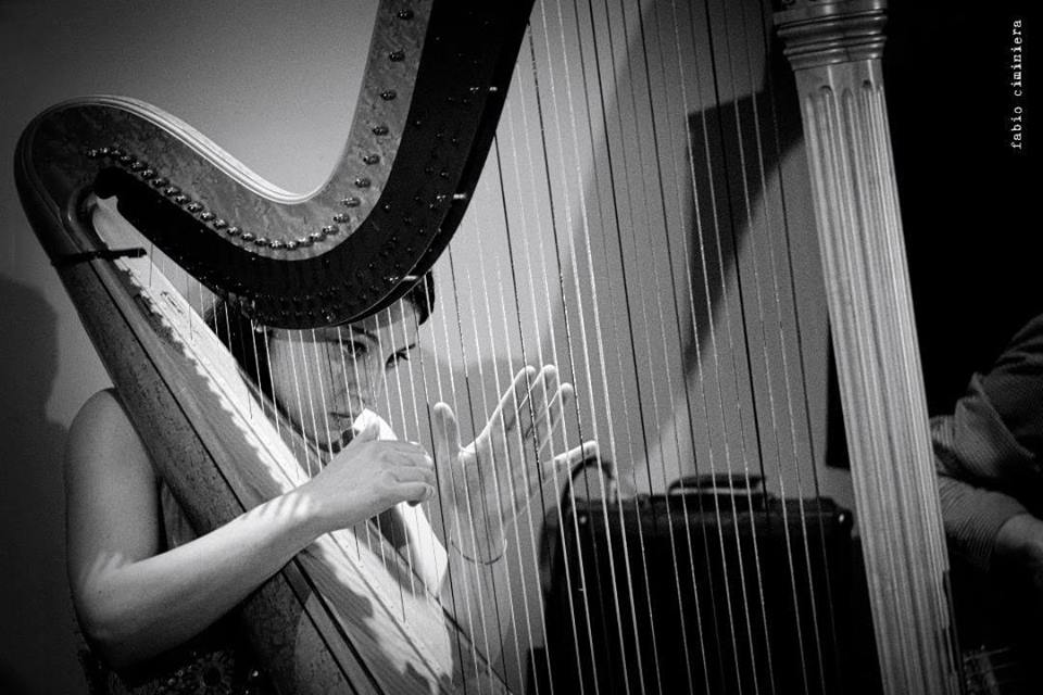 Harpbeat trio